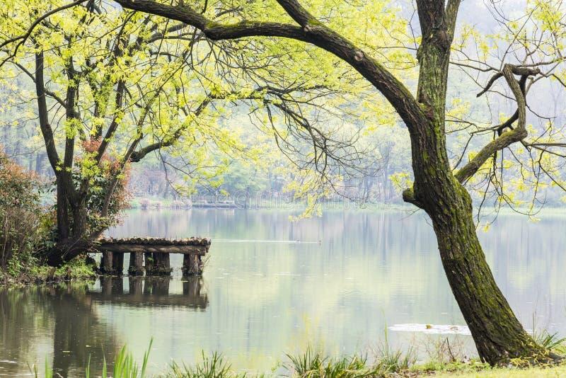 Het westen interne meer en perzikbloesem royalty-vrije stock afbeelding
