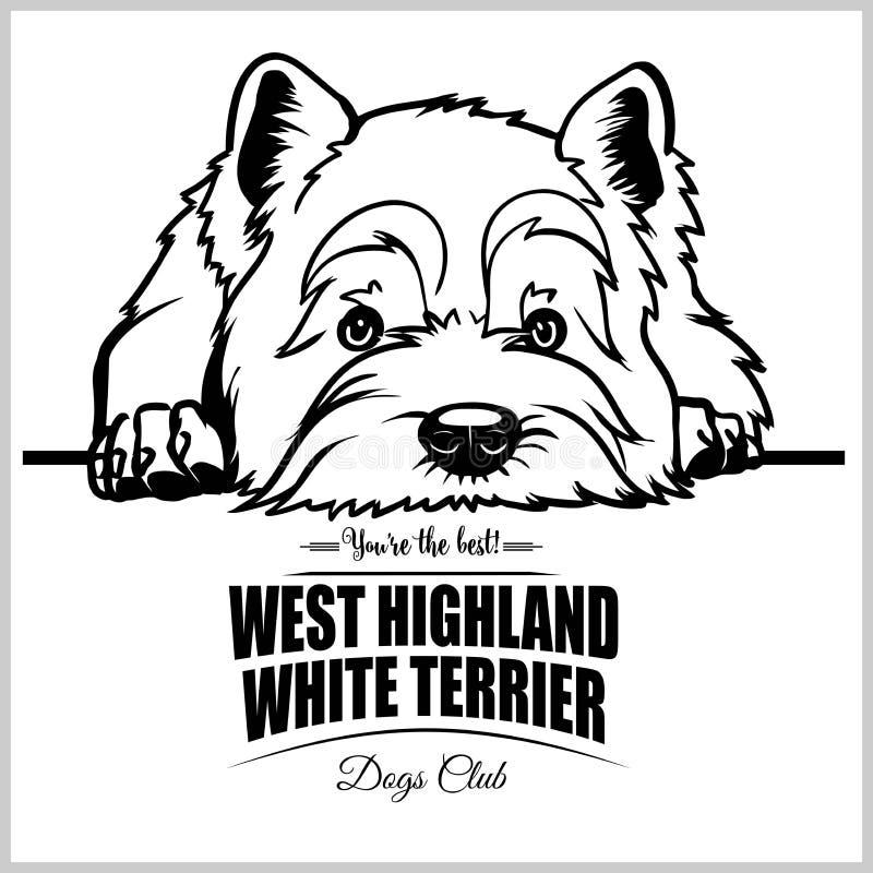 Het westenhoogland Wit Terrier - vectorillustratie voor t-shirt, embleem en malplaatjekentekens vector illustratie