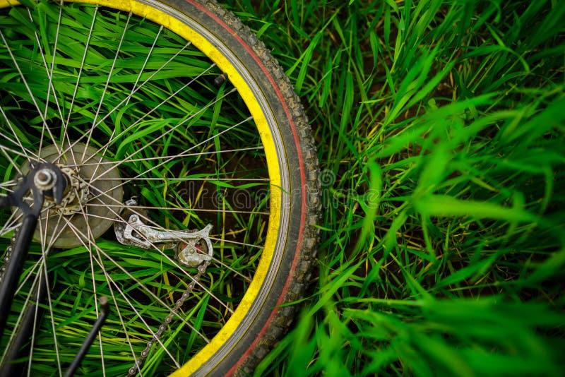 Het wiel van de fiets op groen gras royalty-vrije stock fotografie