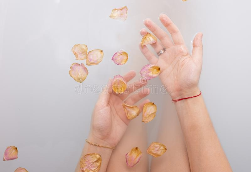 Het wijfje dient water met roze roze bloemblaadjes in stock afbeelding