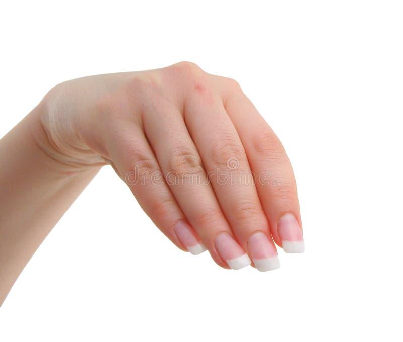 Het wijfje manicured hand royalty-vrije stock foto's