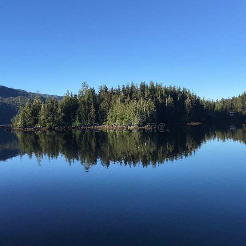 Het wijzen van op bomen en water royalty-vrije stock foto