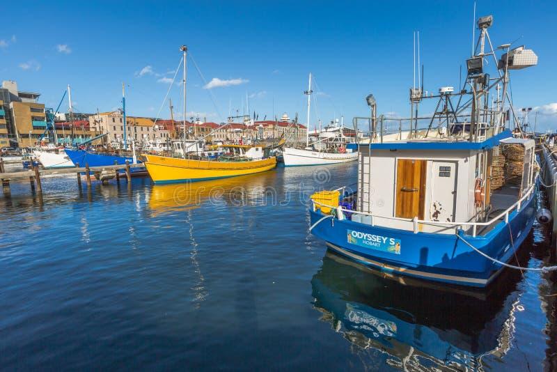 Het wijzen van op Vissersboten, Hobart Harbour stock foto's