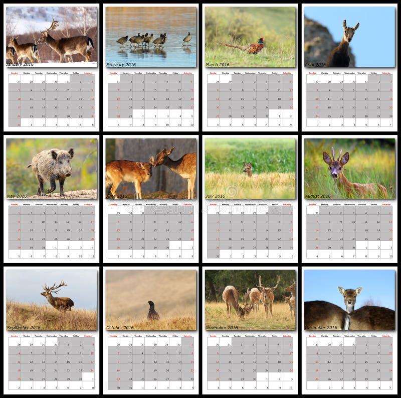 Het wildkalender 2016 stock afbeeldingen