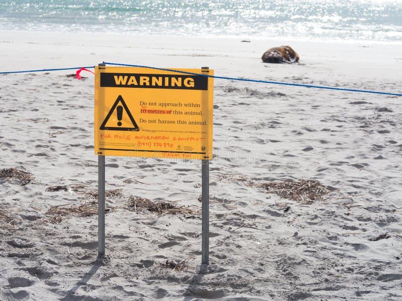 Het wildwaarschuwingsbord met verwonde verbinding op strand stock foto's
