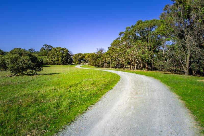 Het winden van landelijke weg onder inheemse Australische bomen royalty-vrije stock afbeeldingen