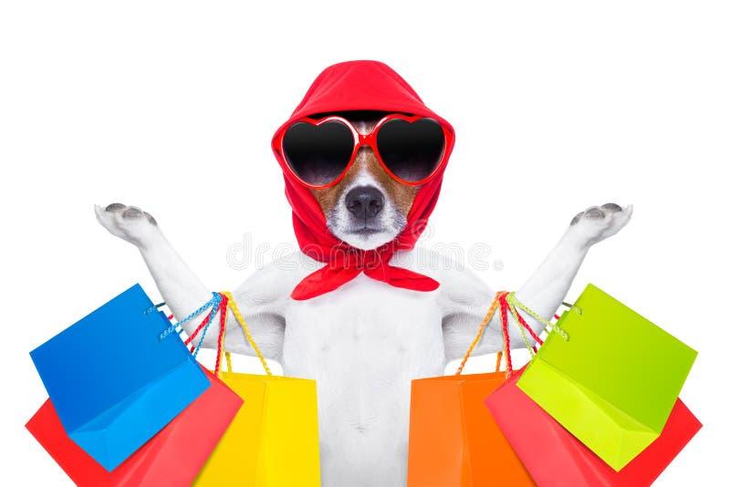 Het winkelen hond stock foto's