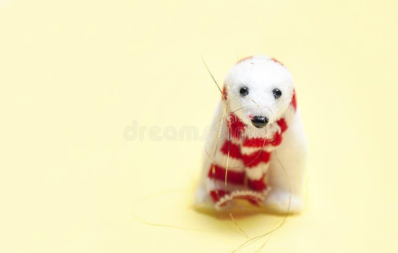 Het het wit van ` s draagt in rode sjaal stock afbeelding