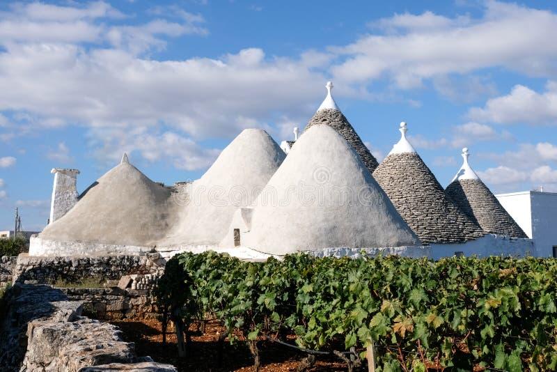 Het wit waste kegel roofed het inbouwen van een wijngaard op een landbouwbedrijf op het gebied van Cisternino/Alberobello in Pugl stock afbeeldingen