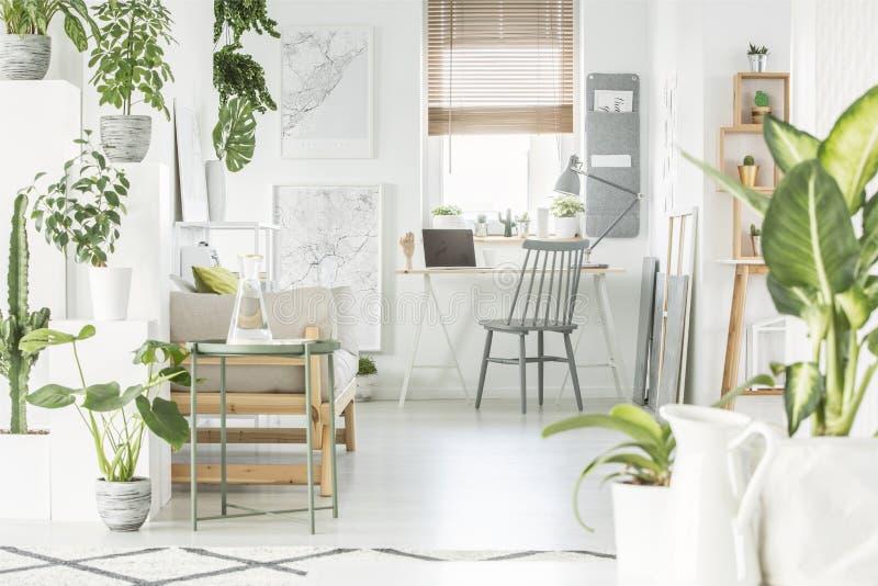 Het witte binnenland van het huisbureau met verse groene installaties, grijze stoel s royalty-vrije stock fotografie