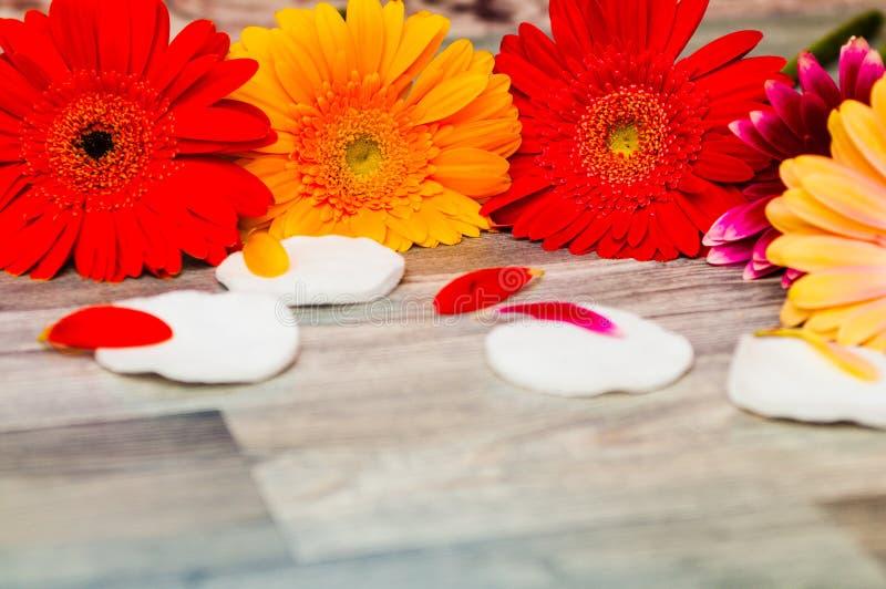 Het witte douchegel, de handdoek, de badspons, de bloem en de kaarsen zijn op achtergrond stock fotografie