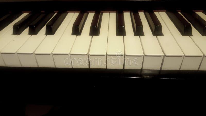 Het witte ivoor en de zwarte sleutels van een piano stock fotografie