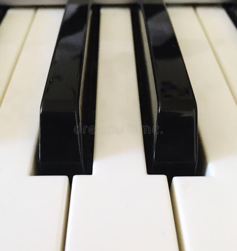 Het witte ivoor en de zwarte sleutels van een piano royalty-vrije stock foto