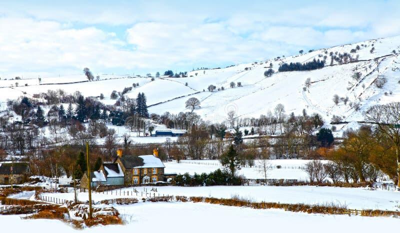 Het witte landschap van de Winter van Kerstmis stock fotografie