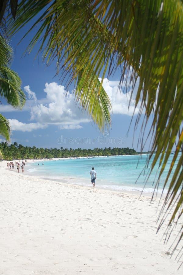 Het Witte Strand Van Het Zand, Palmen: Paradijs Stock Fotografie