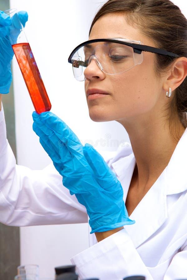 Het woking van de wetenschapper in een laboratorium royalty-vrije stock fotografie