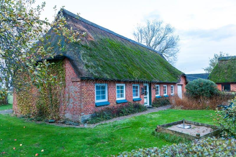 Het woonhuis met groene bemost met stro bedekt dak stock afbeeldingen