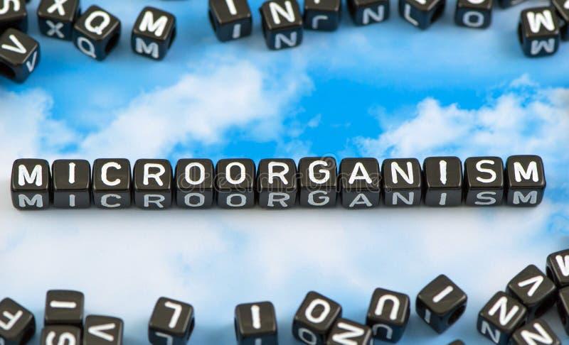 Het woordmicro-organisme royalty-vrije stock afbeelding