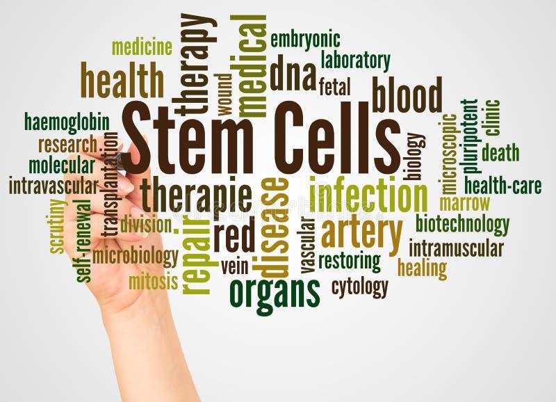 Het woordwolk en hand van stamcellen met tellersconcept stock illustratie