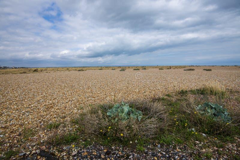 Het wordl` s grootste gebied van dakspaan - Dungeness, Kent, Engeland stock foto