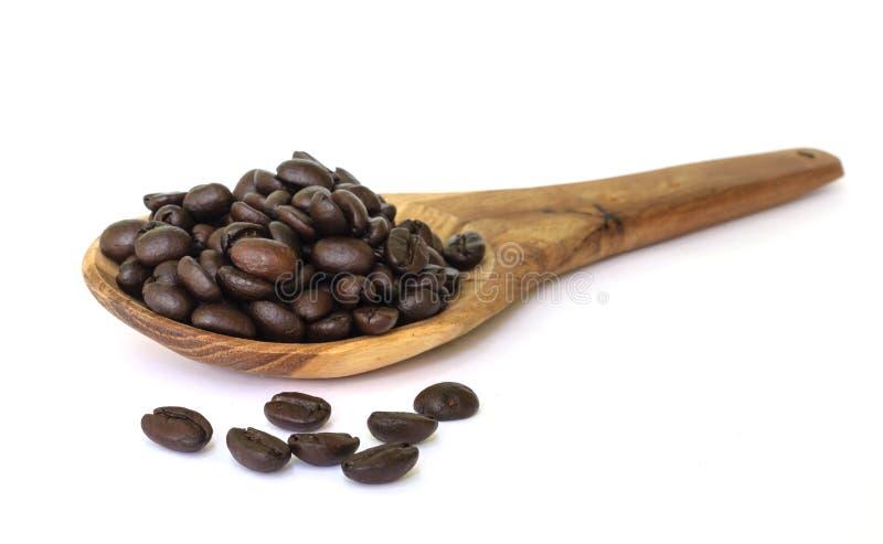 Het zaad van de koffieboon. stock fotografie