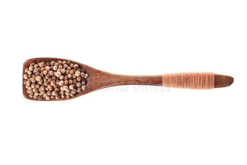 Het zaad van de kruidkoriander in houten die lepel op een witte backgr wordt geïsoleerd royalty-vrije stock fotografie