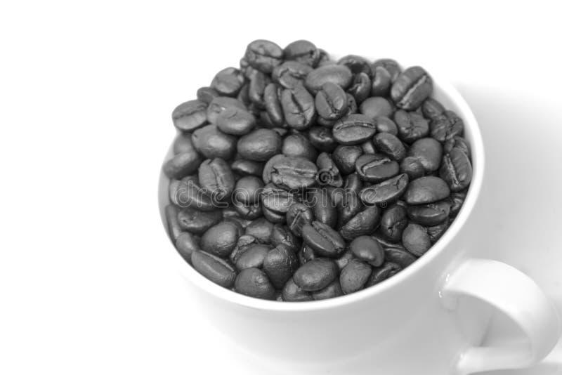 Het zaad van koffiebonen in witte zwart-witte kop royalty-vrije stock foto