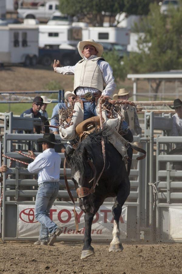 Het Zadel Bronc van de Rodeo van San Dimas stock foto's