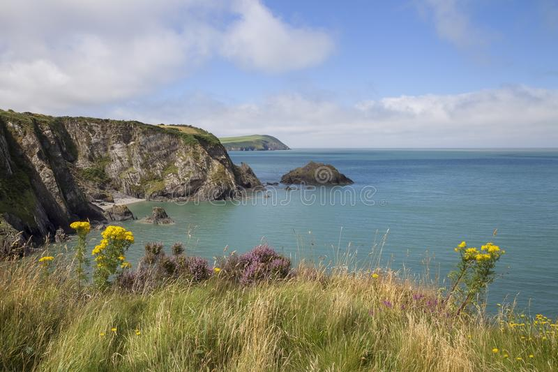 Het Zand van Nieuwpoort, Pembrokeshire royalty-vrije stock foto's