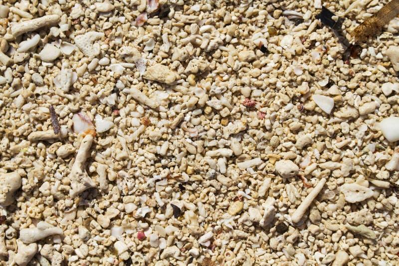 Het zandclose-up van het koraalstrand voor achtergrond Tropische strandfoto royalty-vrije stock afbeelding