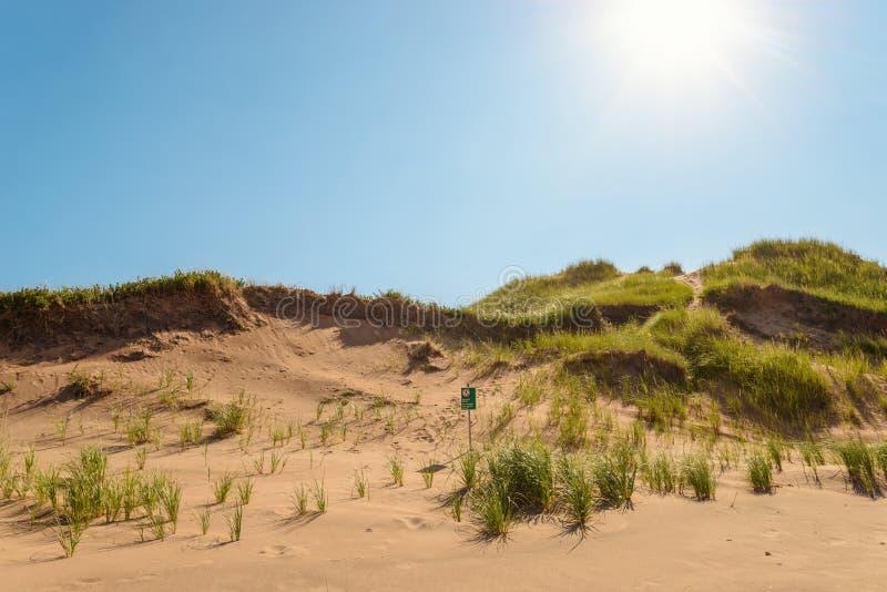 Het Zandduinen van het Brackleystrand royalty-vrije stock afbeeldingen