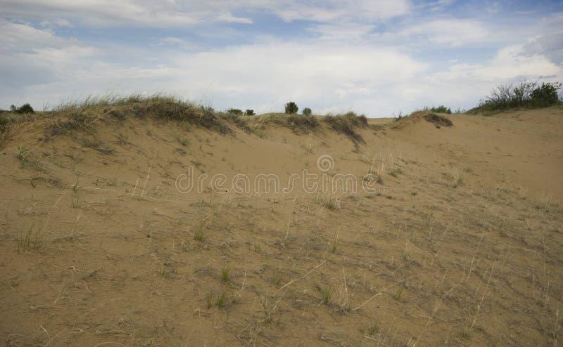 Het Zandduinen van Saskatchewan stock afbeelding