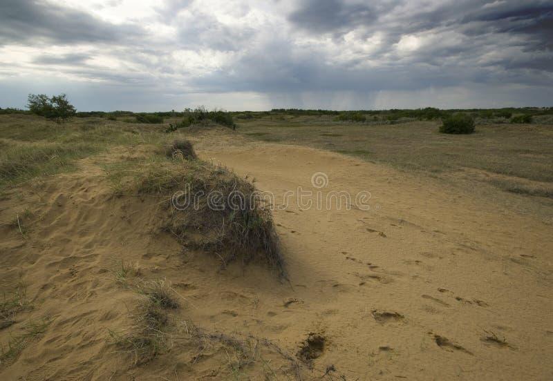 Het Zandduinen van Saskatchewan royalty-vrije stock fotografie