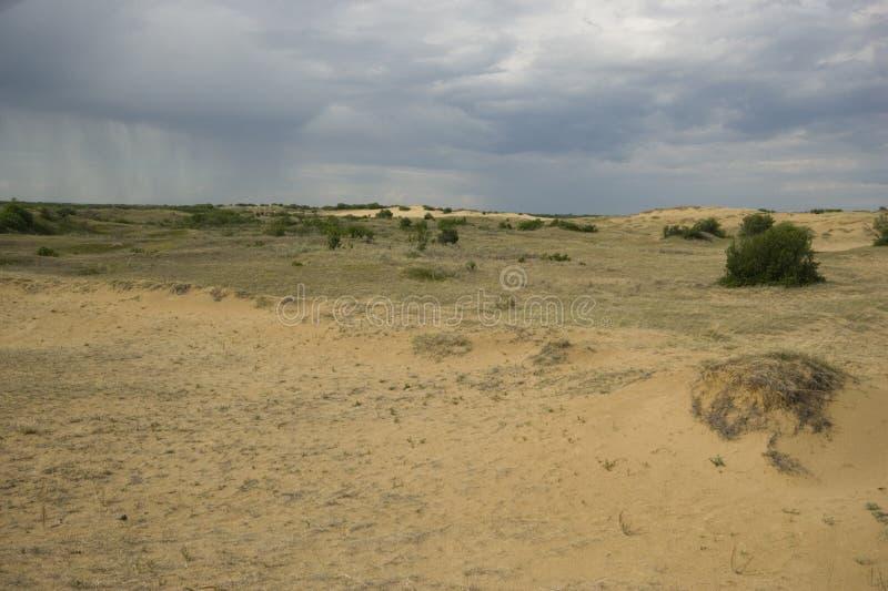 Het Zandduinen van Saskatchewan stock afbeeldingen
