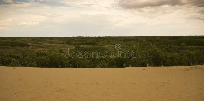 Het Zandduinen van Saskatchewan royalty-vrije stock afbeelding