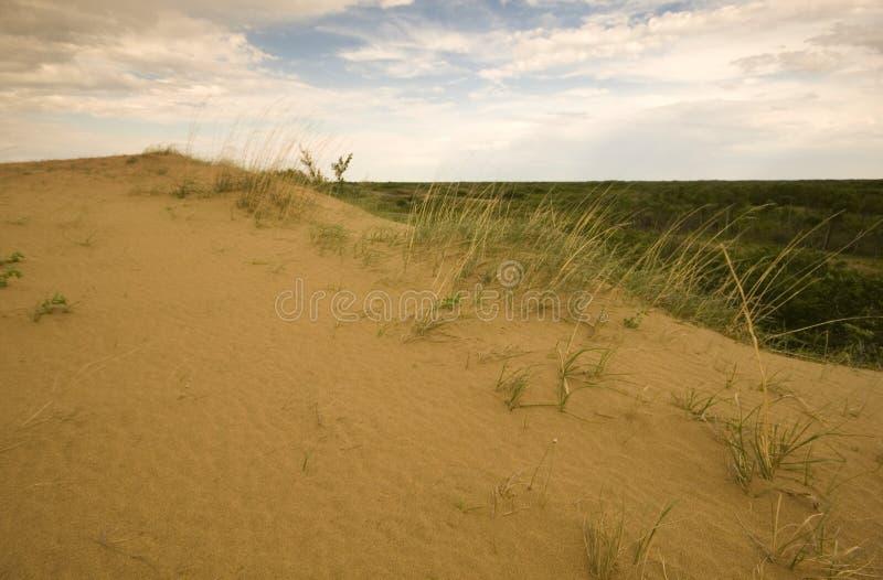Het Zandduinen van Saskatchewan stock foto