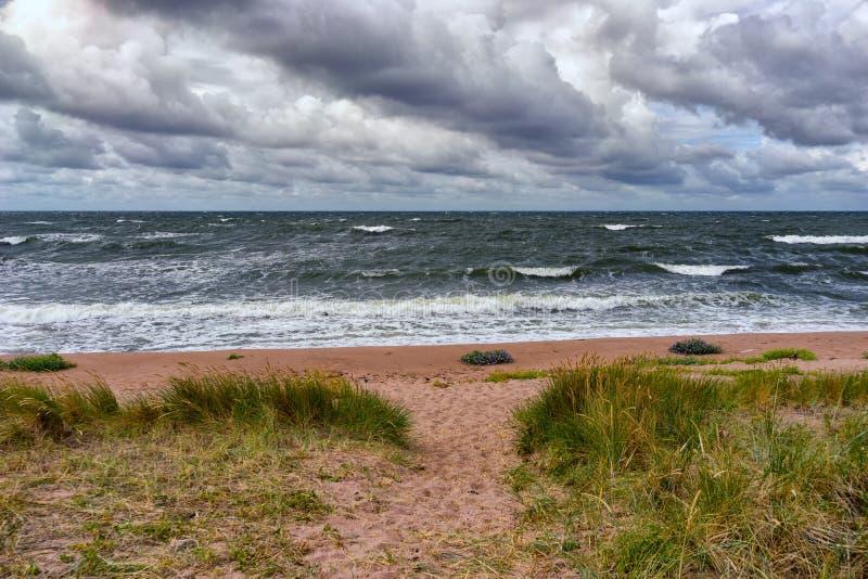 Het zandige strand van de Oostzee in een onweer stock foto's