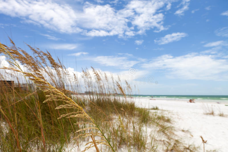 Het Zeer belangrijke Strand Sarasota Florida van de siësta royalty-vrije stock foto's