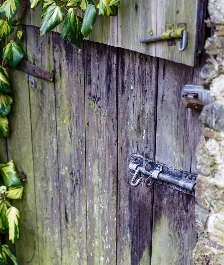 Het zeer oude antieke slot van de ijzerdeur op oude, mos-behandelde deuren stock foto's