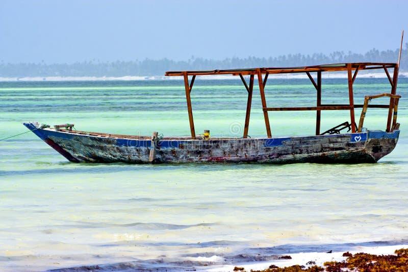 het zeewierliefde van strandzanzibar stock foto's