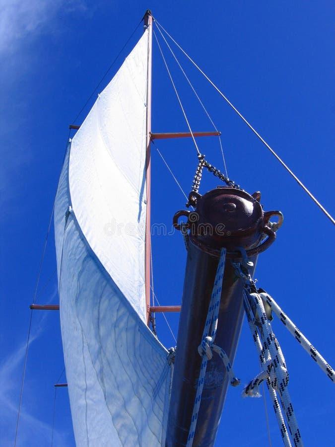 Het zeil van de catamaran royalty-vrije stock foto's