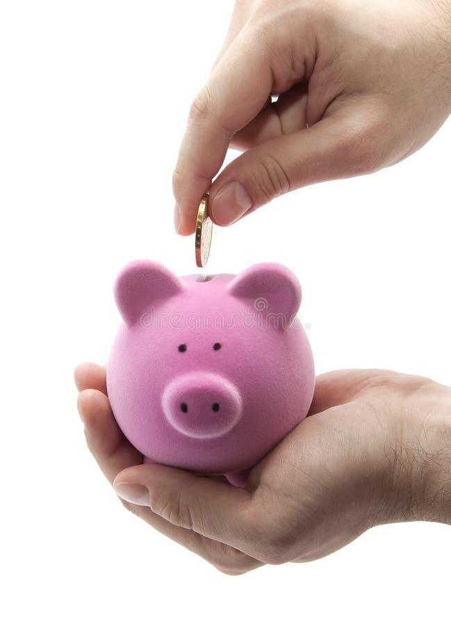 Het zetten van muntstuk in het spaarvarken royalty-vrije stock foto
