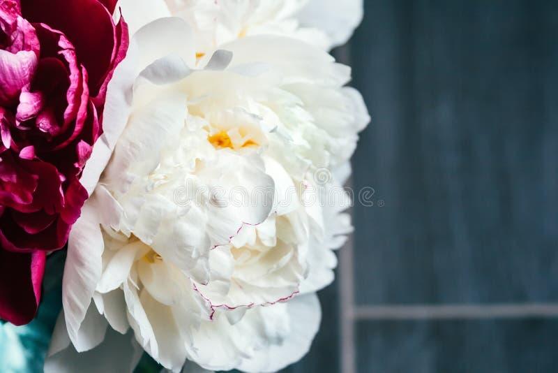 Het zicht van de sluiting van een bouquet van witte en roze pinda's tegen een grijze, wazig achtergrond in een aangename tint royalty-vrije stock afbeeldingen