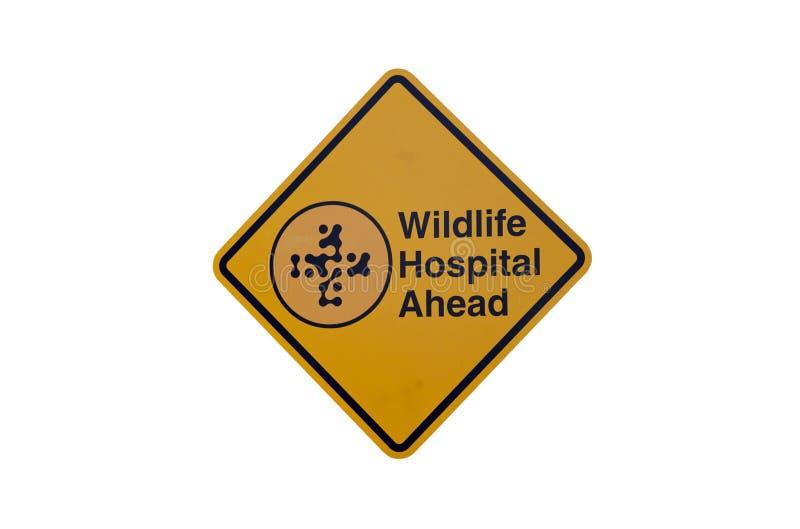 Het ziekenhuisteken van het wild stock foto