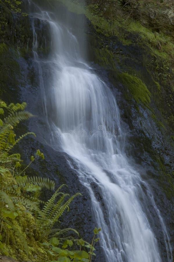 Het zilver valt het Park van de Staat Oregon stock foto