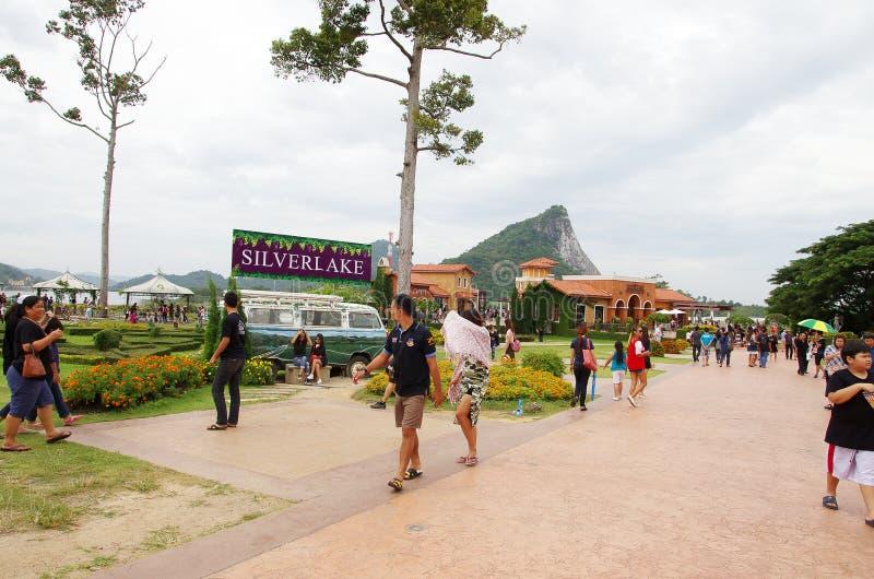 Het zilveren landbouwbedrijf Pattaya Thailand van de meerdruif royalty-vrije stock foto's