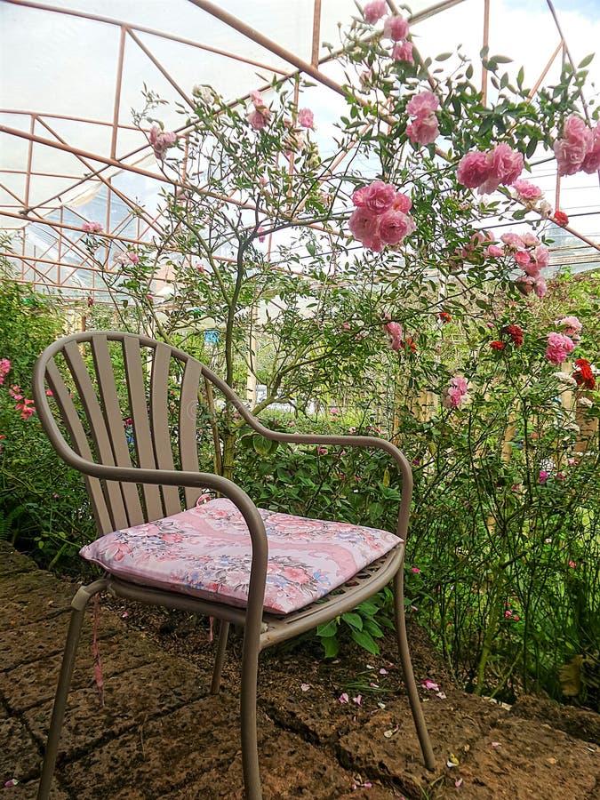 Het zitten in roze tuin stock foto's