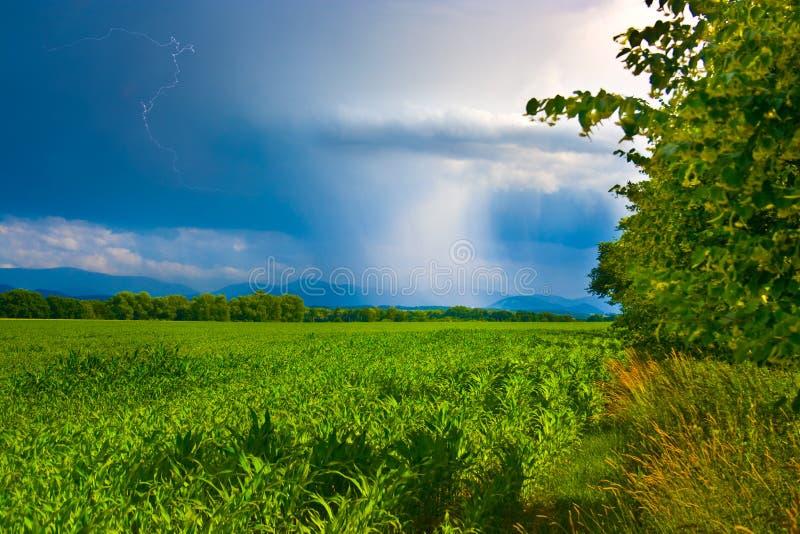 Het zonnige en regenachtige landschap van de lente stock foto's