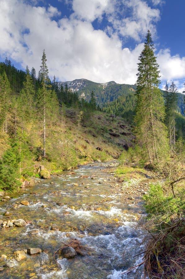 Het zonnige landschap van de de lenteberg stock afbeelding