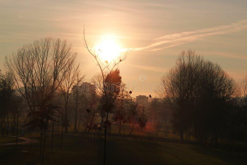 Het zonsopgang kalme leven in een natuurreservaat, platteland bij zonsondergang royalty-vrije stock fotografie